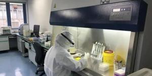 西安市民可线上预约新冠核酸检测 24小时内出结果