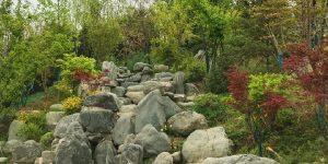 长安公园即将开园 游客提早打卡赞山水