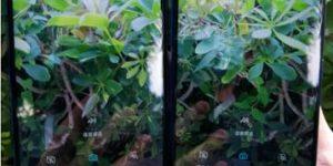 中兴5G新机将成为首款支持国内四大运营商的5G手机