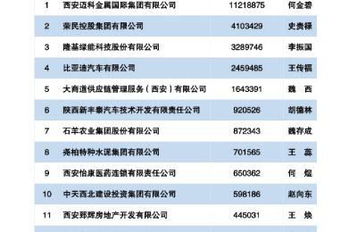2020 西安民营企业100强榜单发布