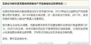 石家庄市新华区天颐佳苑项目地产开发商被依法刑事拘留